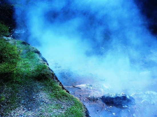 Waimangu Volcanic Valley: Steam coming out of the rocks