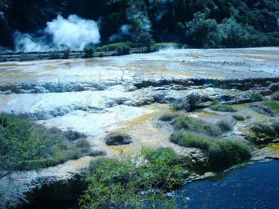 Waimangu Volcanic Valley : The Terraces of sulphur and limestone
