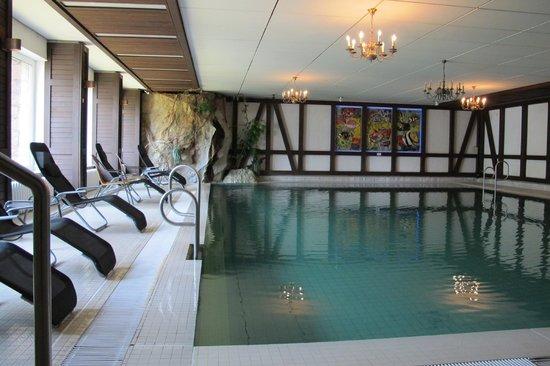 Berg- und Jagdhotel Gabelbach: pool indoors