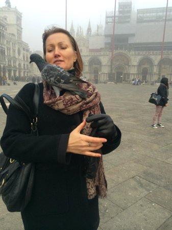 Piazza San Marco (Plaza de San Marcos): Туман и голуби