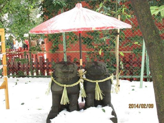 Asakusa Shrine: 祈求良緣、夫婦和樂的夫妻貃犬