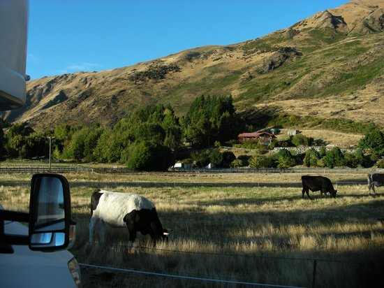 Wanaka Top 10 Holiday Park: Top 10 Wanaka 3