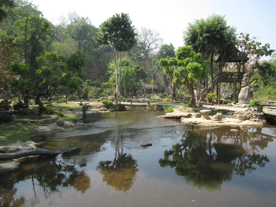 Tharnthong Lodges: part of the garden