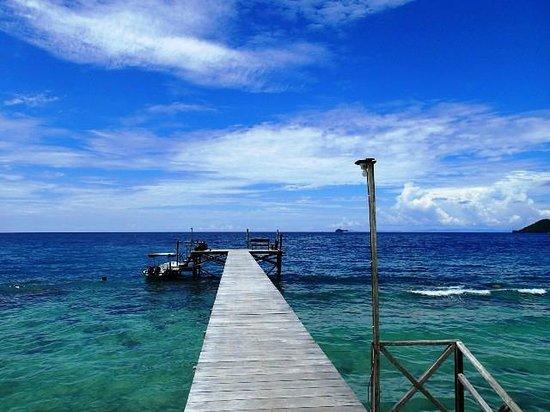 Raja Ampat Biodiversity Eco Resort : Embarcadero.