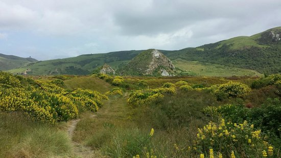 Offtrack MTB Tours - Day Tours: Heading back from Wickliffe Bay