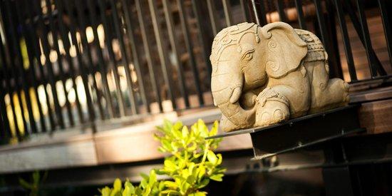 Restaurant Samui-Thai : Elefant Terrasse