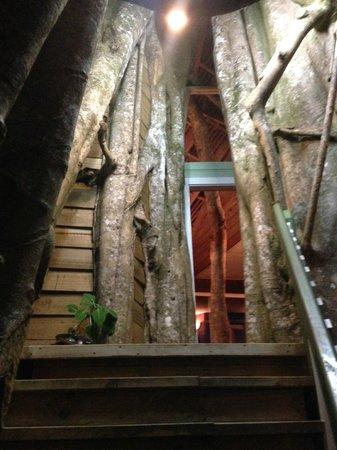 Lupe Sina Treesort : the front door