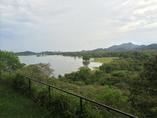 Heritance Kandalama : View from the balcony