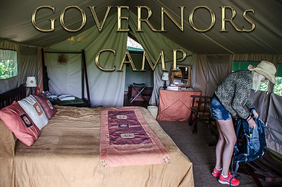 Governor's Camp: Room