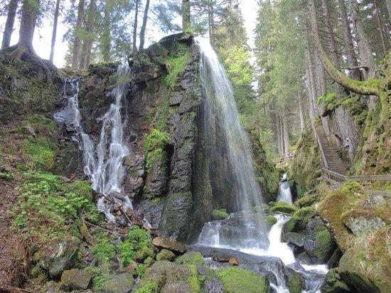 Gasthof Schwarzwaldhaus: Wasserfall in Menzenschwand
