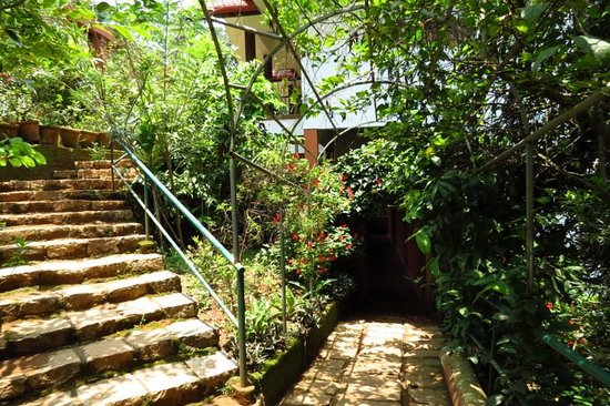 Planet Green Plantation Resort: Entry path for the rooms, down stairs are deluxe and upstairs are premium