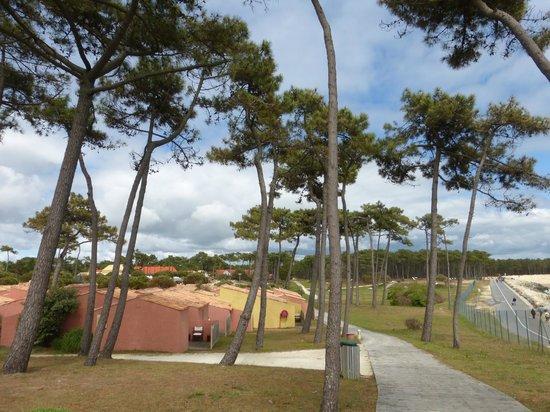 Club Med La Palmyre Atlantique : les bungalows près de la mer