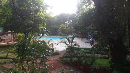 Prospect Hotel : The serene pool