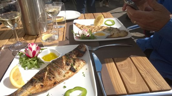 The Square: Whole seabass and whole dover sole