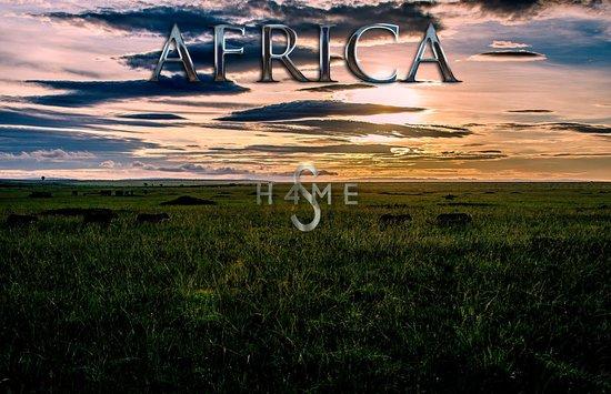 Governor's Camp : Masai Mara