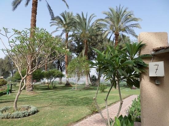Jolie Ville Hotel & Spa - Kings Island, Luxor : the garden outside our room with nile view