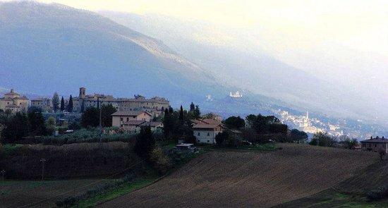 La Terrazza fio...Rita: Ripa e Assisi
