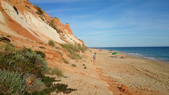 Plage de Falesia : Playa de Falesia