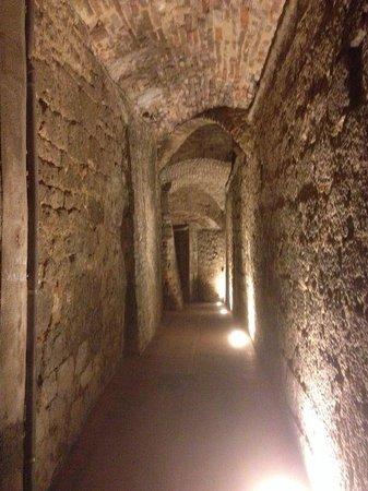 Podere Villuzza : In centro a San Gimignano viuzze