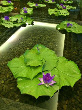 Bangkok Hotel Lotus Sukhumvit: Lotus in the hotel lobby