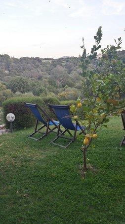 La Murichessa : Garden