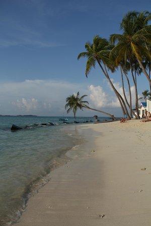 Arena Beach Hotel: Public beach