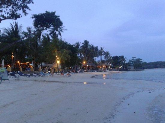 The Briza Beach Resort Samui : Surrounds