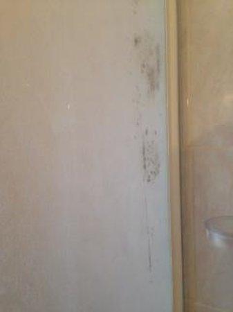 Hotel Solidago: Toilet photo