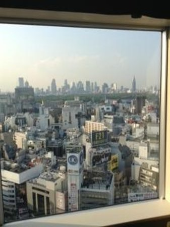 Shibuya Excel Hotel Tokyu: view form our room on 23. floor