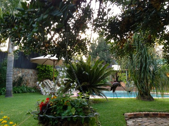 Claires of Sandton: relax in the garden and pool