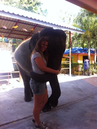 Hutsadin Elephant Foundation: Such a great time!!!!