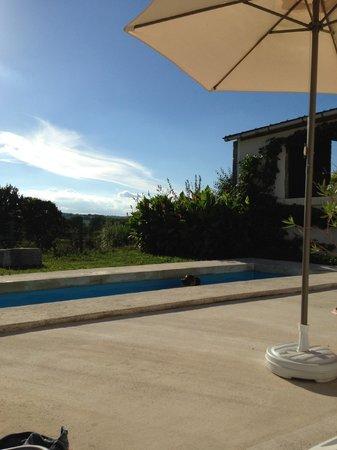 La Grange de Lucie - Chambres d'hotes en Perigord : Relax by the pool