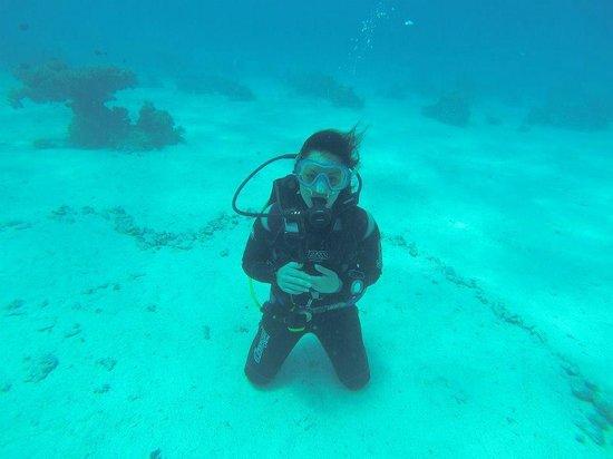 Diving Center Dive Club Italiano: terza immersione per prova d'esame brevetto PADI