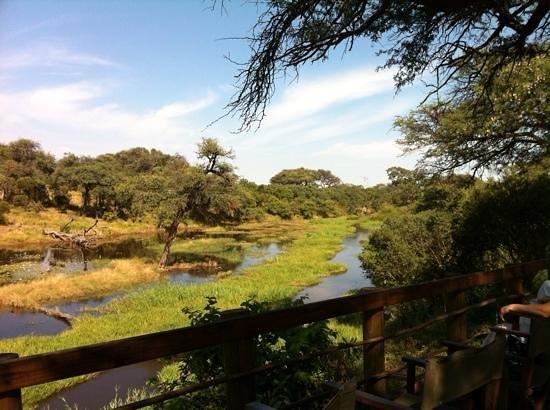 Mogothlo Safari Lodge : vista desde la terraza del lodge