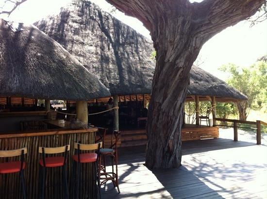 Mogothlo Safari Lodge : bar y restauranre