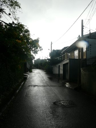 Lavinia House: Street in front of property