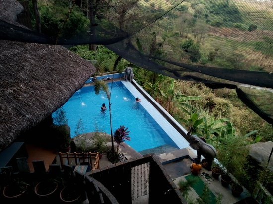 Luljetta's Hanging Gardens and Spa: infinity pool