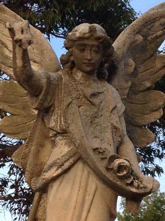 West Terrace Cemetery: Angel