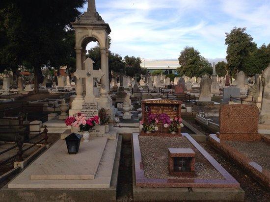 West Terrace Cemetery: West Terrace Cementry