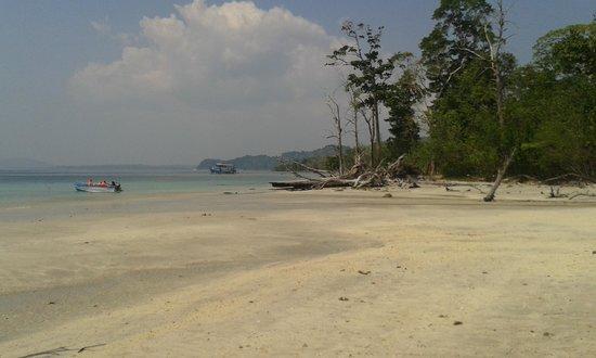 Elephant Beach : Elephanta beach