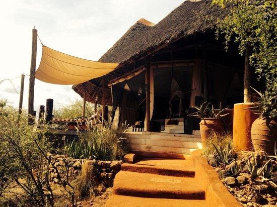 Sasaab Lodge : Room at Sasaab - each is a standalone tented banda