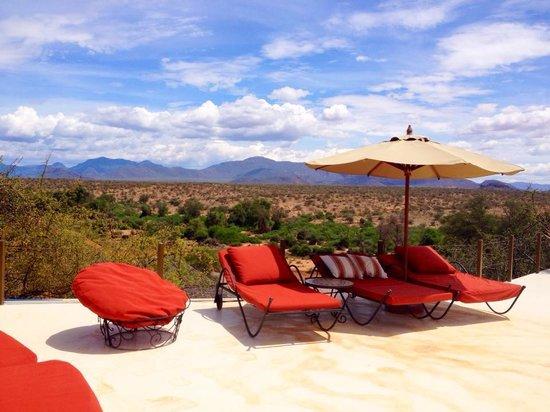Sasaab Lodge : Pool view