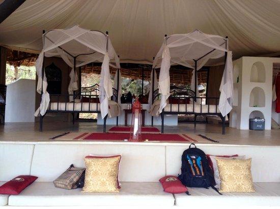 Sasaab Lodge : Room