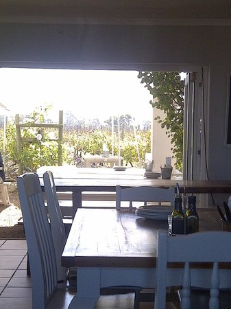 Bramon Wine Estate : Looking out onto vineyard from our table