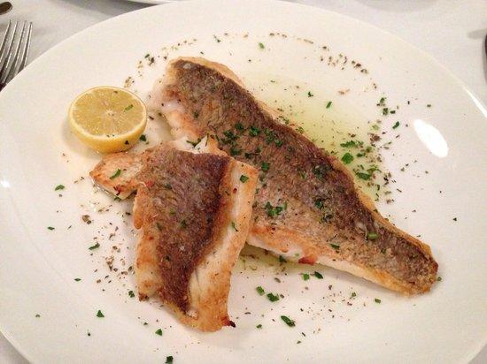 Athenian Greek Restaurant: Chunky snapper filet