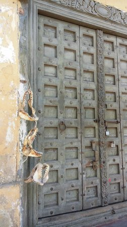 Old Town: Old Door and Shark Jaws