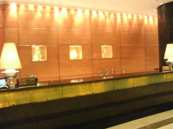 Radisson Blu Plaza Delhi : desk reception