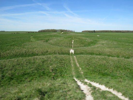 Barrows on the walk to Stonehenge