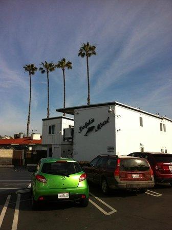 Dolphin Motel : Hotel