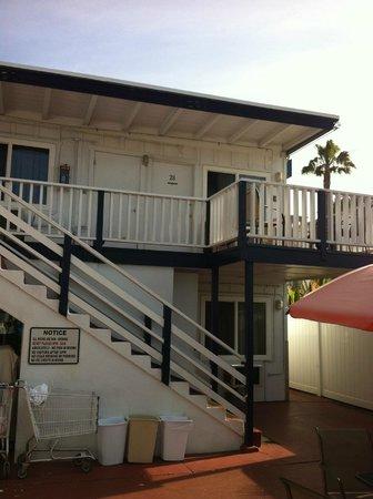 Dolphin Motel: Room 28